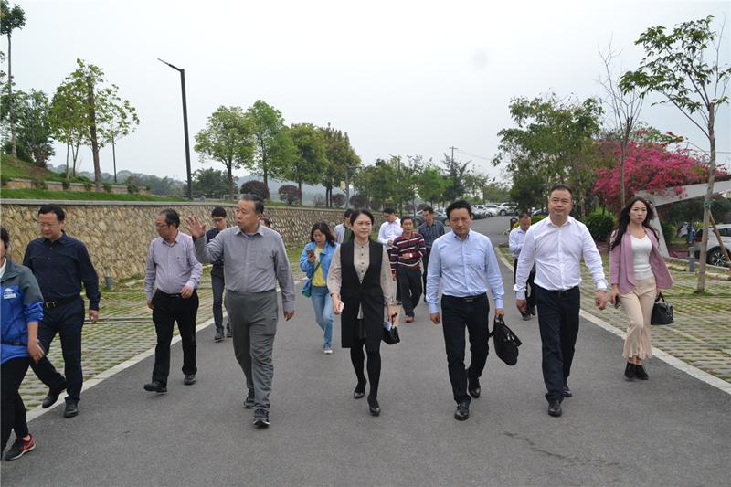 杨宏伟常委副市长带队前往青秀山考察创5A经验
